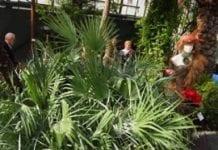 XXXVI Jesienna Wystawa Ogrodnictwa, Leśnictwa i Zoologii