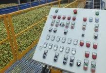 Importujemy koncentrat soku jabłkowego