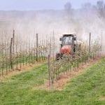 7 zasad bezpiecznego stosowania środków ochrony roślin