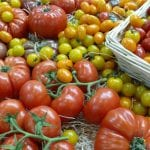 Spójne znakowanie produktów BEZ GMO