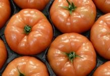 Tanieją pomidory na Ukrainie. Jest konkurencja z Turcji