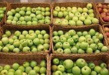 Duży popyt na Ukrainie. Jakie ceny jabłek?