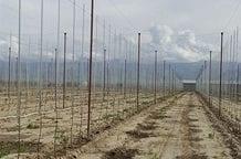 Kazachstan chce modernizować rolnictwo korzystając z polskiego know-how