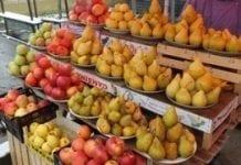 Zbiory owoców i warzyw na Ukrainie