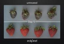 Nowa powłoka ochronna ogranicza psucie się warzyw i owoców