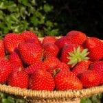 Polacy najbardziej lubią truskawki i pomidory