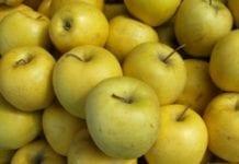 Ukraińcy jedzą więcej swoich jabłek