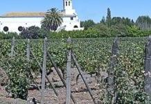 Zmniejszenie eksportu z Chile
