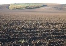 Resort rolnictwa pracuje nad prawem dotyczącym obrotu ziemią