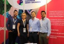 Polscy plantatorzy borówki wspólnie z europejskimi partnerami eksportują do Azji