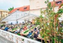 Mistrzowie Cydru wybrani w Lublinie