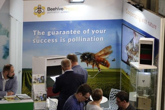 Miedzynarodowy projekt firmy Pszczelinka - Beehivie