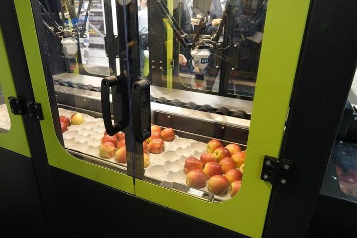 Robot pakujacy firmy Greefa