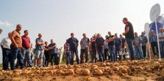 Dzień Ziemniaka w małopolskich Szczytnikach