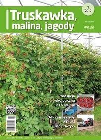 TMJ numer 1/2019 - okładka czasopisma