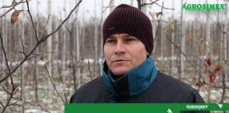 Pokaz zimowego cięcia jabłoni – Robert Binkiewicz – Agrosimex