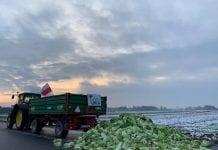 Protesty rolnicze w całym kraju