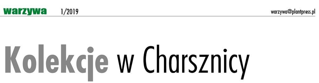 Odmiany kapusty - kolekcje w Charsznicy
