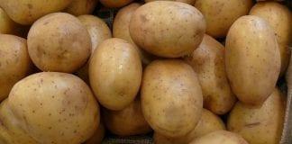 Cena ziemniaków na Ukrainie – prognozy na 2020
