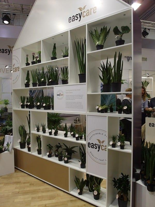 Rośliny łatwe w uprawie – produkt skierowany zwłaszcza do młodych odbiorców