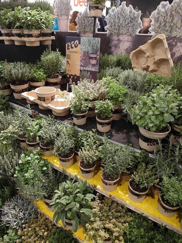 Aby zioła przyciągnęły odbiorców muszą być obecnie wyprodukowane metodami ekologicznymi oraz podane w doniczkach podlegających recyklingowi