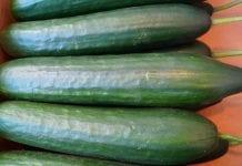 Ceny warzyw w Bułgarii