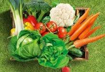 Dagonis®- fungicyd do ochrony warzyw - BASF