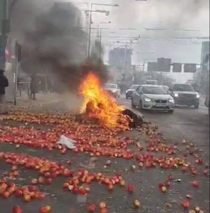 A u nas na Placu Zawiszy staruszka zbiera jabłka…