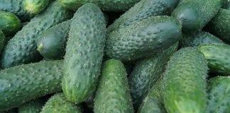 Skąd pochodzą supermarketowe warzywa i owoce?
