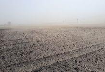 Brak śniegu może doprowadzić do suszy wiosną