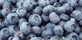 Krajowe owoce jagodowe – początek sezonu na Broniszach