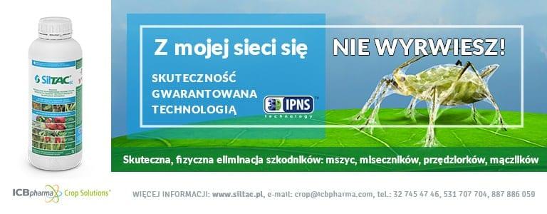 www.siltac.pl