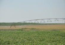Ochrona przed suszą i RHD – nowości w harmonogramie PROW 2014-2020