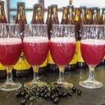 Owoce jagodowe dodatkiem do piwa