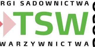 TSW 2020