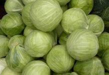 Warzywa w hurcie: wzrosty i spadki cen