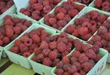Mijający tydzień na rynku hurtowym owoców
