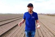 Komunikat warzywniczy Timac Agro