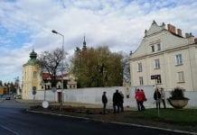 Miejska winnica w Sandomierzu