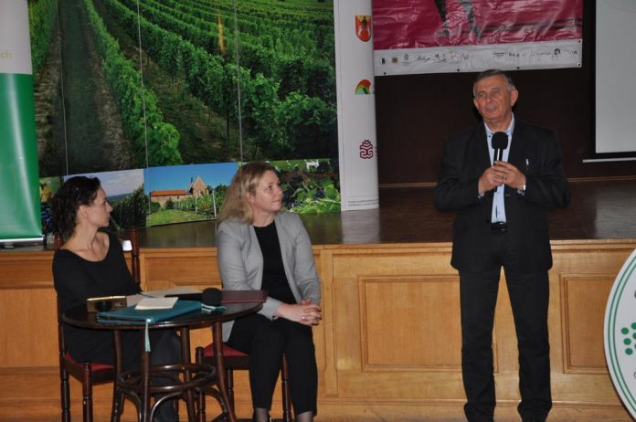 Na konferencji naukowej dot. uprawy winorośli na Sandomierszczyźnie, fot. J. Klepacz-Baniak