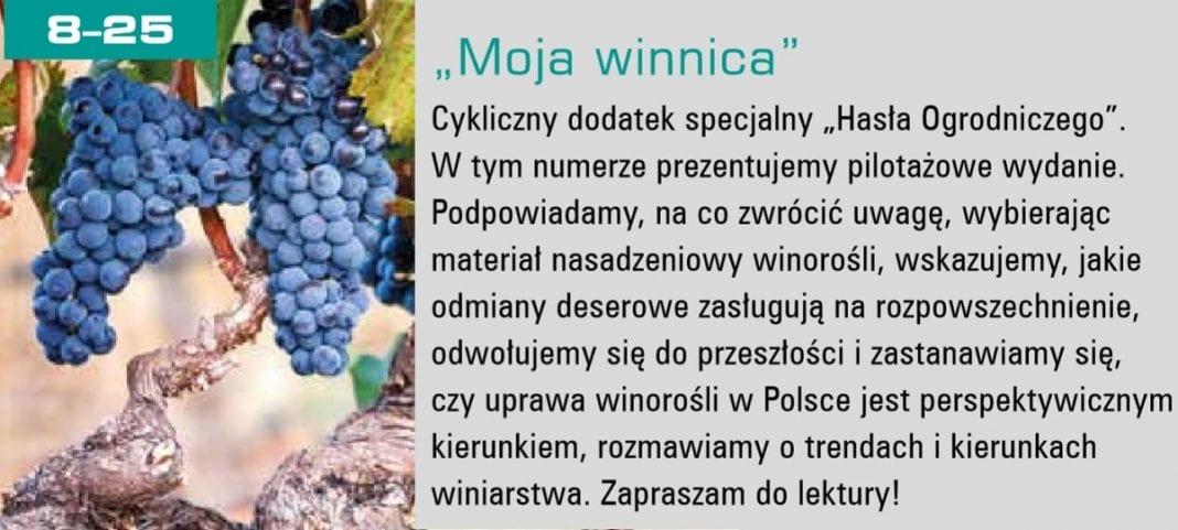 Moja Winnica - dodatek specjalny w Haśle Ogroniczym nr 5