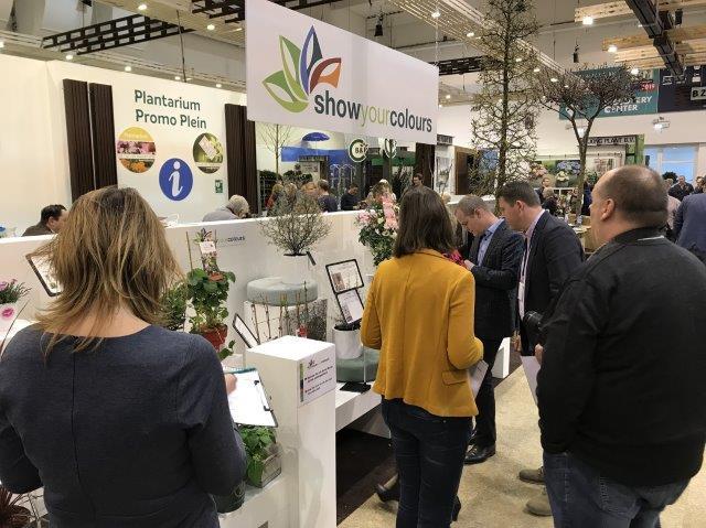Ocenianie konkursowych roślin przez jury