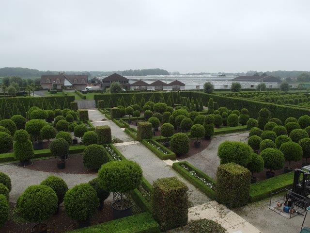 Wawrzynowy ogród