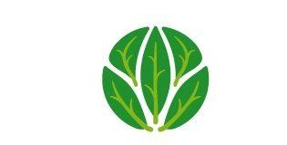 Międzynarodowy Rok Zdrowia Roślin