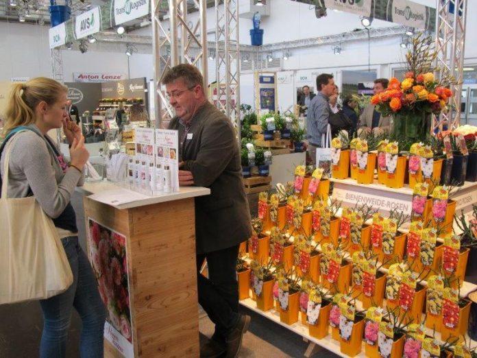 Na stoisku firmy Rosen Tantau można było sprawdzić zapach kwiatów róż wybranych odmian