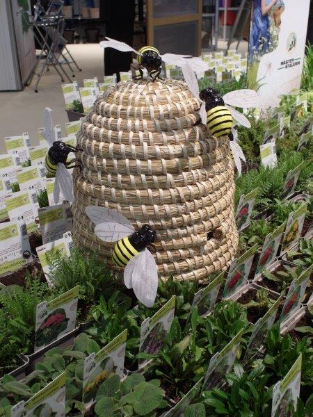 Prezentacja roślin sprzyjających roślinom zapylającym