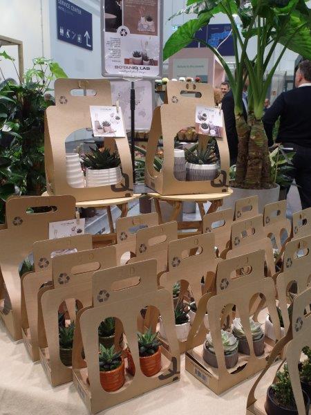 Rośliny w biodegradowalnych opakowaniach