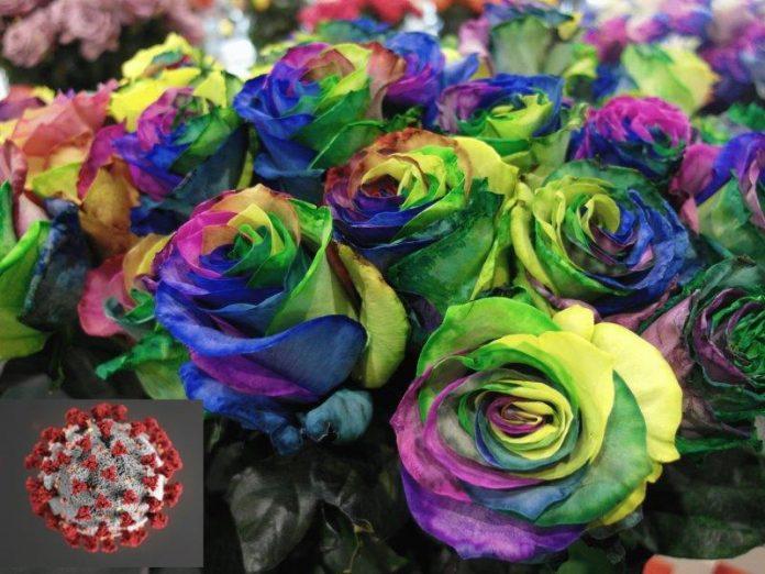 Koronawirus a handel kwiatami