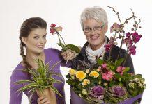 Jak kwiaty mogą nam pomóc w czasie pandemii?