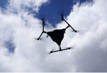 Drony na pomoc plantatorom truskawek